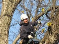 tree_pruning